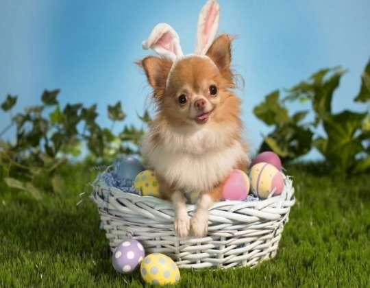 Pâques, une fête à risque pour nos animaux